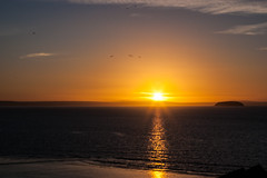Sunset West coast England sea view (strangesimon) Tags: sunset glowing colours seascape evening flight birds west