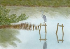 Great Blue Heron Hunting (Solly Avenue) Tags: hiking birds coastal ipadpainting painterly waterscape landscape impressionism
