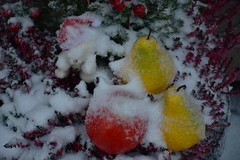 Lumises Rakveres (anuwintschalek) Tags: nikond7200 18140vr eesti estland estonia rakvere lumi schnee snow snowfall tuisk schneetreiben schneesturm schneefall january 2019