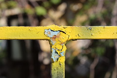 T for Tired (Argyro Poursanidou) Tags: tired decay paint old metal yellow abstract