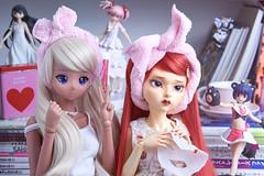 Chitose and Margaret (Muri Muri (Aridea)) Tags: do dolls dream margaret dodollsdream ball jointed doll smart smartdoll chitose