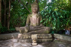 "IMGP4153 Buddha <a style=""margin-left:10px; font-size:0.8em;"" href=""http://www.flickr.com/photos/137129299@N07/46124868364/"" target=""_blank"">@flickr</a>"