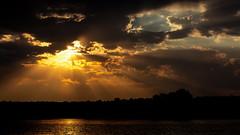 Sunset on the Chobe River (Thomas Retterath) Tags: river afrika africa botswana chobe fluss nopeople safari 2018 natur nature thomasretterath wildlife sonnenaufgang sunrise sonnenstrahlen sun sonne sunrays wolken clouds blau blue gelb yellow orange himmel sky horizont horizon coth coth5