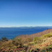 Puget Sound on a sunny day