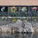 Trossachs Pier, Loch Katrine