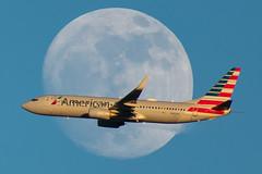 N980AN Boeing 737-823 American (SamCom) Tags: n980an boeing 737823 american b738 737 moon kdfw dfw dallasfortworthinternational foundersplaza
