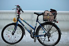 Ice Rider (marylee.agnew) Tags: ice bike outdoor dangerous winter cold transportation