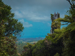 From A Forest To A Landscape (Shzee Photography) Tags: tree landscape forest summit nz newzealand nature plants green blue bush hd scenery clouds taranaki pukeiti