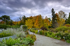 Sunset in Edwards Gardens DSCT8167 (Alleung555) Tags: sunset edwards gardens fall colours foliage cloudy day