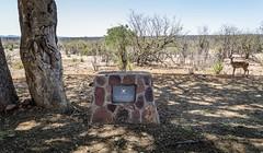 Dzundwini fountain (with Nyala) (Sheldrickfalls) Tags: jjcoetzer dzundwini pundamaria punda nyala krugernationalpark kruger krugerpark limpopo southafrica