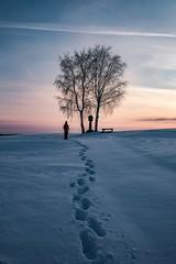 short reverence (Andreas.W.) Tags: mühlviertel oberösterreich upperaustria xf23 winterhiking winterlandschaft winterwalk winterevening eveningmood