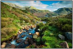 Stream to Crummock Water, Cumbria (steve.gombocz) Tags: landscape nikon nikonusers nikond810 nikoneurope nikoncamera nikonfx nikon140240mmf28 sceneryshooting simplylandscapes cumbria westcumbria colour colours color colourmania green natureisbeautiful lakedistrict lakedistrictuk out outandabout outdoors landscapephoto landscapephotography landscapephotograph scenery landscapescene hills fells stream beck crags crummockwater nature natureviews landscapepicture nicepicture nicelandscapes ngc flickrlandscapes flickrscenery explorelandscapes explorescenery